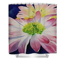 Charisma Shower Curtain by Judy Mercer