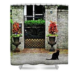 Charleston Cat Shower Curtain