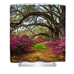 Charleston Sc Spring Flowers Scenic Landscape South Carolina  Shower Curtain
