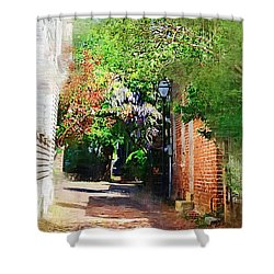 Shower Curtain featuring the photograph Charlestons Alley by Donna Bentley