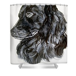 Charlie Shower Curtain by Lil Taylor