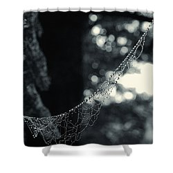 Charlotte's Necklace Shower Curtain