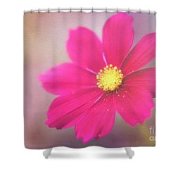 Charming Cosmos Shower Curtain