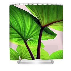 Charming Sequence Shower Curtain