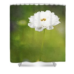 Charming White Cosmos Shower Curtain