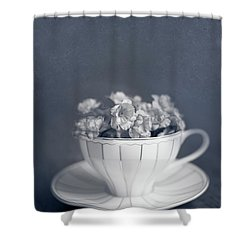 Charms Of The Past Shower Curtain
