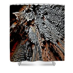 Charred Cedar Shower Curtain by Brian Chase