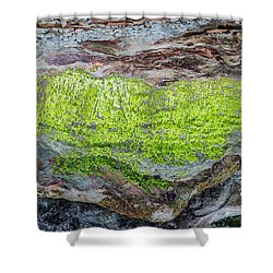 Chartreuse Abstraction Shower Curtain