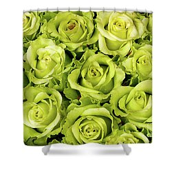 Chartreuse Colored Roses Shower Curtain