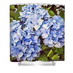Chase Away The Blues Shower Curtain