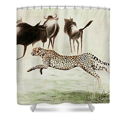 Chase Shower Curtain