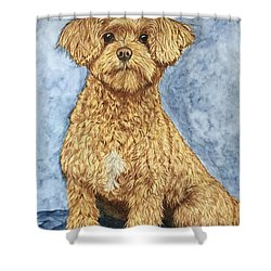 Chase The Maltipoo Shower Curtain