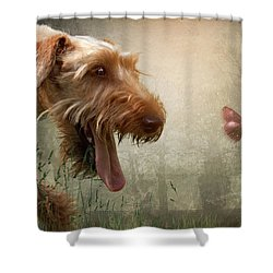 Chasing Dreams Shower Curtain