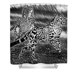Chasing Mum Shower Curtain