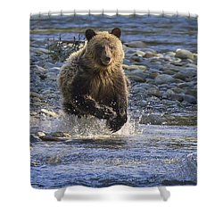 Chasing Salmon Shower Curtain