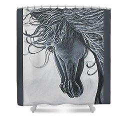 Chasing The Wind Shower Curtain