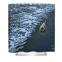 Chasing Waves Shower Curtain