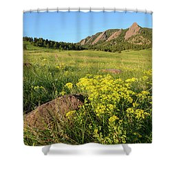 Chautauqua Park Wildflowers Shower Curtain