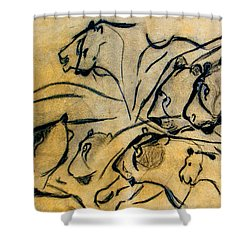 chauvet cave lions Clear Shower Curtain