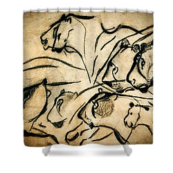 Chauvet Cave Lions Shower Curtain