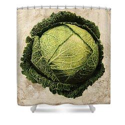 Checcavolo Shower Curtain by Danka Weitzen