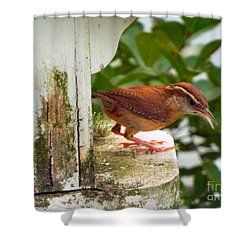 Checking Out New Digs Shower Curtain by Audrey Van Tassell