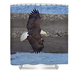 Shower Curtain featuring the photograph Checking Out The River by Elvira Butler