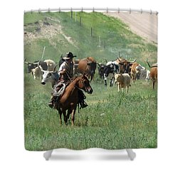 Checking The Cattle Shower Curtain