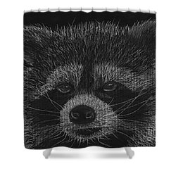 Cheeky Little Guy - Racoon Pastel Drawing Shower Curtain