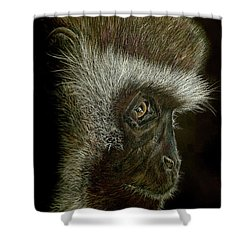 Cheeky Monkey Shower Curtain