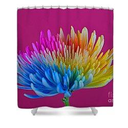 Cheerful Shower Curtain by Ray Shrewsberry