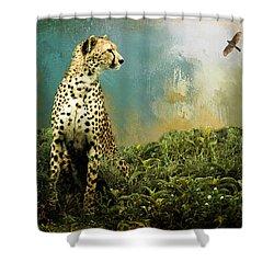 Cheetah Shower Curtain by Diana Boyd