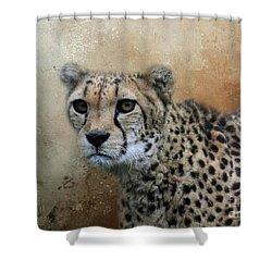 Cheetah Portrait Shower Curtain by Eva Lechner