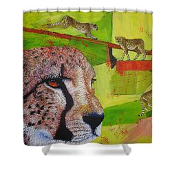 Cheetahs At Play Shower Curtain