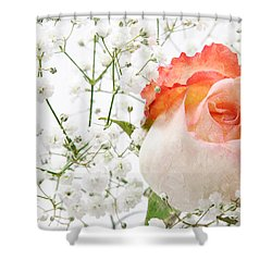 Cherish Shower Curtain by Andee Design