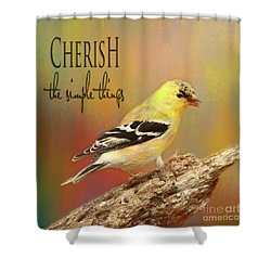 Shower Curtain featuring the photograph Cherish by Darren Fisher