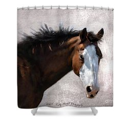 Cherokee Shower Curtain by Kathy Russell
