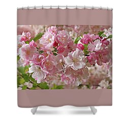 Shower Curtain featuring the photograph Cherry Blossom Closeup by Gill Billington