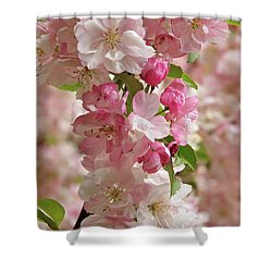 Shower Curtain featuring the photograph Cherry Blossom Closeup Vertical by Gill Billington