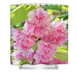 Cherry Blossom Cluster Shower Curtain