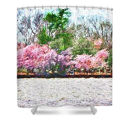 Cherry Blossom Day Shower Curtain