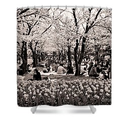 Cherry Blossom Festival Shower Curtain