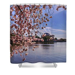 Shower Curtain featuring the photograph Cherry Blossom Over Tidal Basin by Rima Biswas