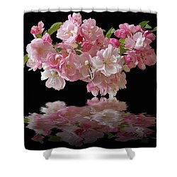 Cherry Blossom Reflections On Black Shower Curtain by Gill Billington