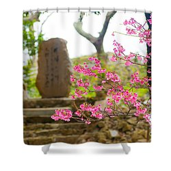 Cherry Blossoms 11 Shower Curtain