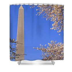 Cherry Blossoms And Washington Shower Curtain by Panoramic Images