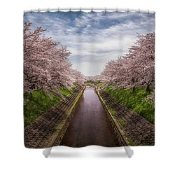 Shower Curtain featuring the photograph Cherry Blossoms In Nara by Rikk Flohr