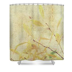 Cherry Branch On Rice Paper Shower Curtain