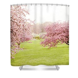 Shower Curtain featuring the photograph Cherry Confection by Jessica Jenney