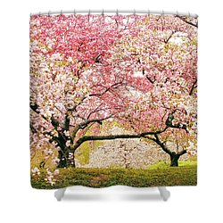 Cherry Delight Shower Curtain by Jessica Jenney